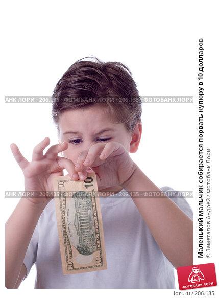 Маленький мальчик собирается порвать купюру в 10 долларов, фото № 206135, снято 20 февраля 2008 г. (c) Заметалов Андрей / Фотобанк Лори