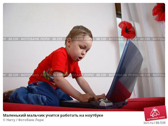 Маленький мальчик учится работать на ноутбуке, фото № 88539, снято 4 июня 2007 г. (c) Harry / Фотобанк Лори
