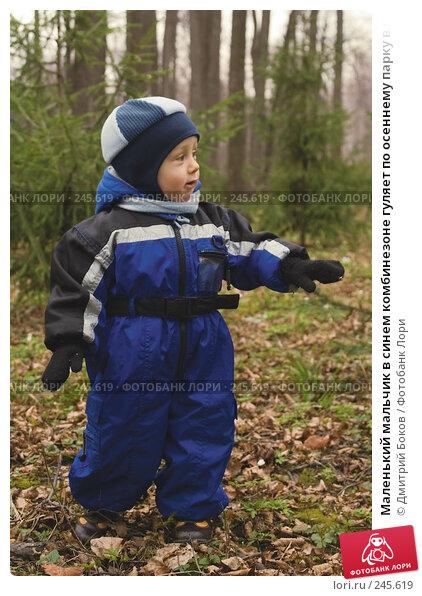 Маленький мальчик в синем комбинезоне гуляет по осеннему парку в пасмурную погоду, фото № 245619, снято 22 апреля 2006 г. (c) Дмитрий Боков / Фотобанк Лори