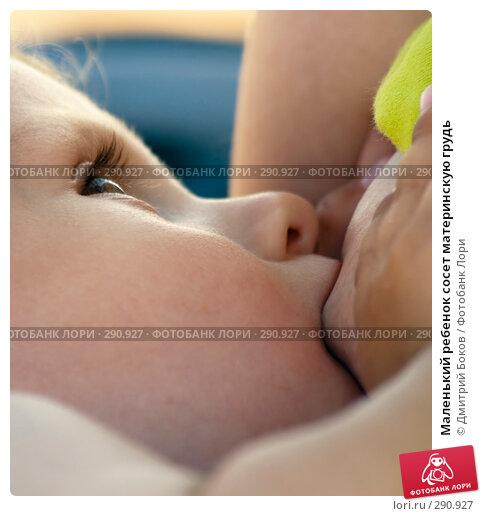 Маленький ребенок сосет материнскую грудь, фото № 290927, снято 15 июля 2006 г. (c) Дмитрий Боков / Фотобанк Лори