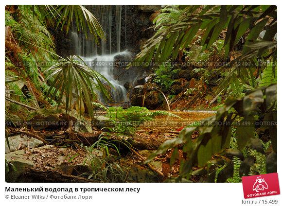 Маленький водопад в тропическом лесу, фото № 15499, снято 8 декабря 2006 г. (c) Eleanor Wilks / Фотобанк Лори