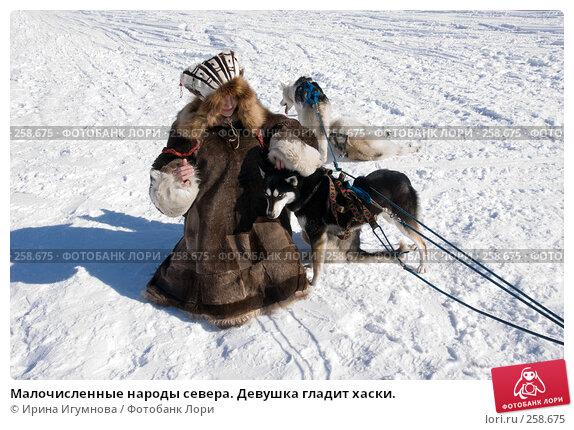 Купить «Малочисленные народы севера. Девушка гладит хаски.», фото № 258675, снято 9 марта 2008 г. (c) Ирина Игумнова / Фотобанк Лори