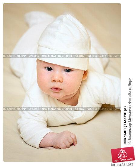 Малыш (3 месяца), фото № 81087, снято 27 августа 2007 г. (c) Владимир Мельник / Фотобанк Лори