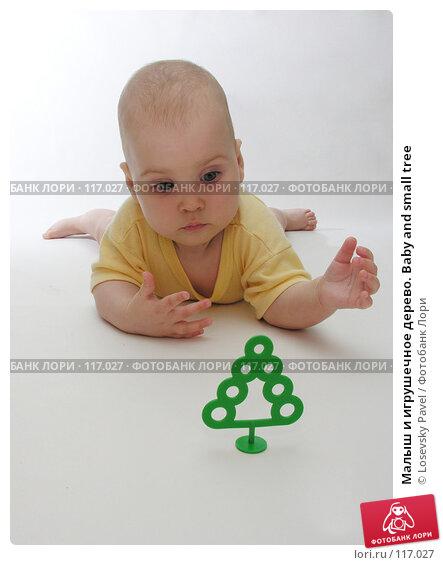 Малыш и игрушечное дерево. Baby and small tree, фото № 117027, снято 1 августа 2005 г. (c) Losevsky Pavel / Фотобанк Лори