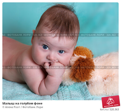 Малыш на голубом фоне, фото № 320363, снято 23 февраля 2017 г. (c) Алена Роот / Фотобанк Лори