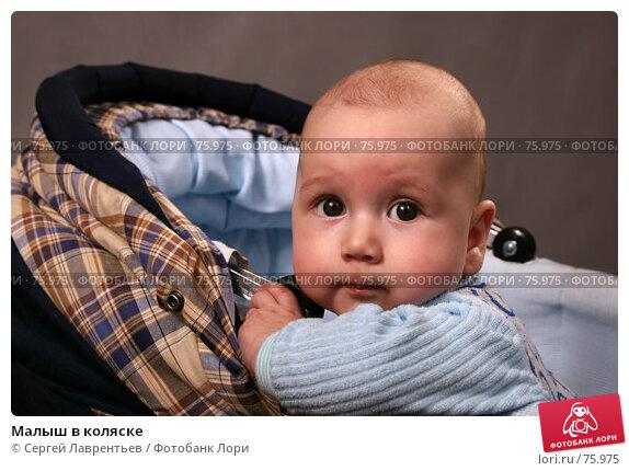 Малыш в коляске, фото № 75975, снято 18 декабря 2004 г. (c) Сергей Лаврентьев / Фотобанк Лори