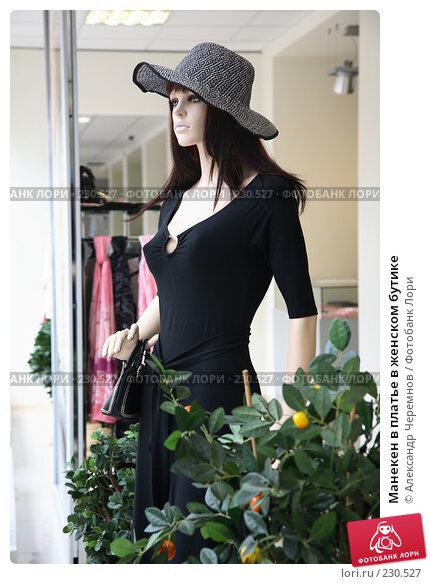 Манекен в платье в женском бутике, фото № 230527, снято 1 августа 2007 г. (c) Александр Черемнов / Фотобанк Лори