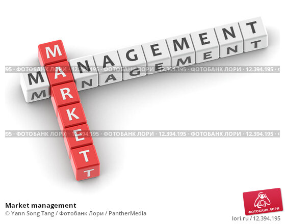 market managment Summary: market and demand analysis are carried out by the project manager in the process of evaluating a project ideathere are six steps in the market and demand analysis: situational analysis and objectives specification, collection of data, market survey, market description, demand forecasting and market planning.