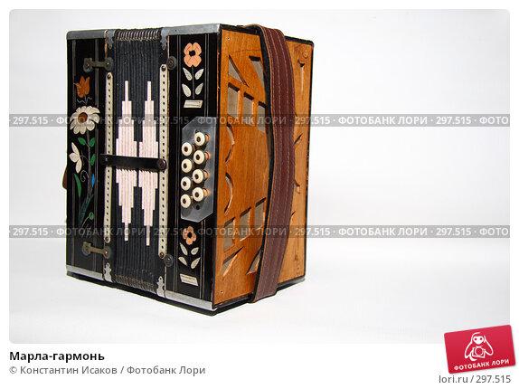 Купить «Марла-гармонь», фото № 297515, снято 24 мая 2008 г. (c) Константин Исаков / Фотобанк Лори