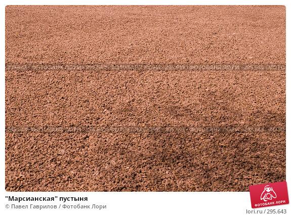 """""""Марсианская"""" пустыня, фото № 295643, снято 30 апреля 2008 г. (c) Павел Гаврилов / Фотобанк Лори"""