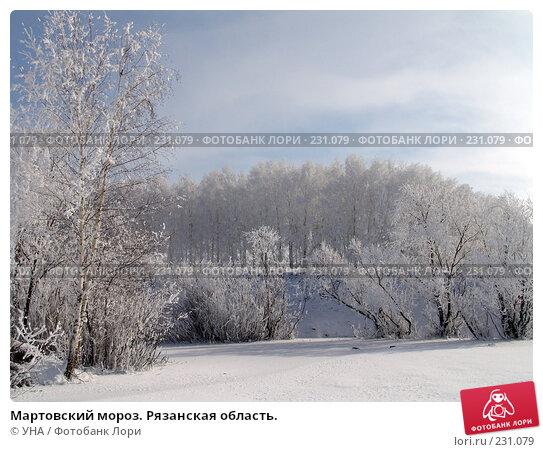 Купить «Мартовский мороз. Рязанская область.», фото № 231079, снято 22 марта 2008 г. (c) УНА / Фотобанк Лори