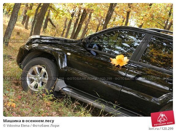 Купить «Машина в осеннем лесу», фото № 120299, снято 7 октября 2007 г. (c) Vdovina Elena / Фотобанк Лори