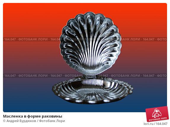 Масленка в форме раковины, фото № 164047, снято 8 апреля 2007 г. (c) Андрей Бурдюков / Фотобанк Лори