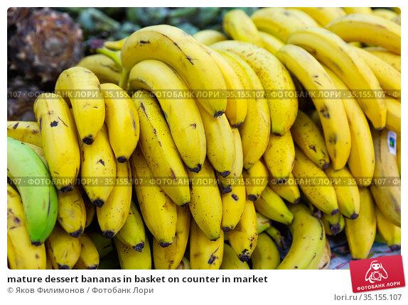 mature dessert bananas in basket on counter in market. Стоковое фото, фотограф Яков Филимонов / Фотобанк Лори