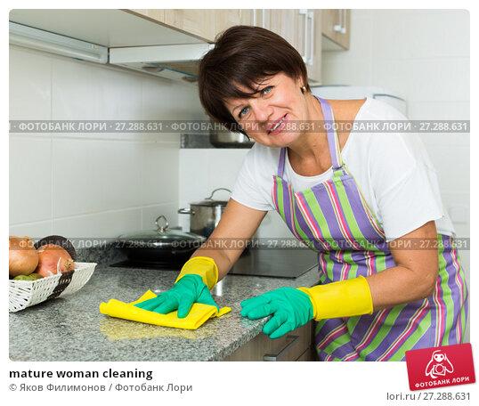 Купить «mature woman cleaning», фото № 27288631, снято 12 марта 2019 г. (c) Яков Филимонов / Фотобанк Лори