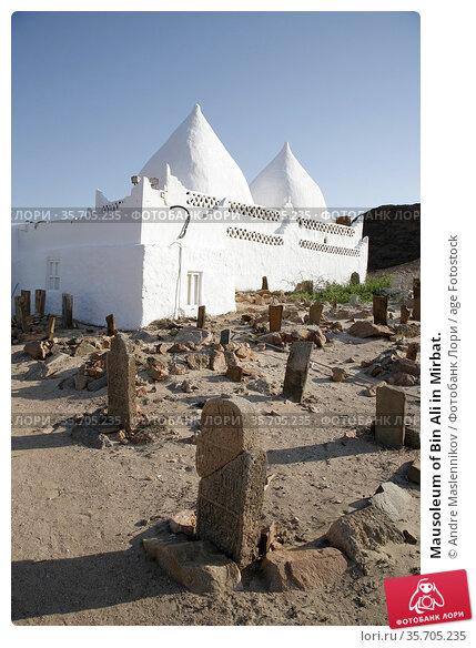 Mausoleum of Bin Ali in Mirbat. Стоковое фото, фотограф Andre Maslennikov / age Fotostock / Фотобанк Лори