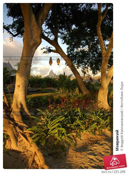 Маврикий, фото № 231295, снято 24 августа 2007 г. (c) Андрей Каплановский / Фотобанк Лори