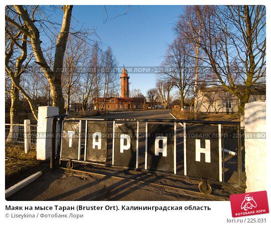 Маяк на мысе Таран (Bruster Ort). Калининградская область, фото № 225031, снято 4 января 2008 г. (c) Liseykina / Фотобанк Лори