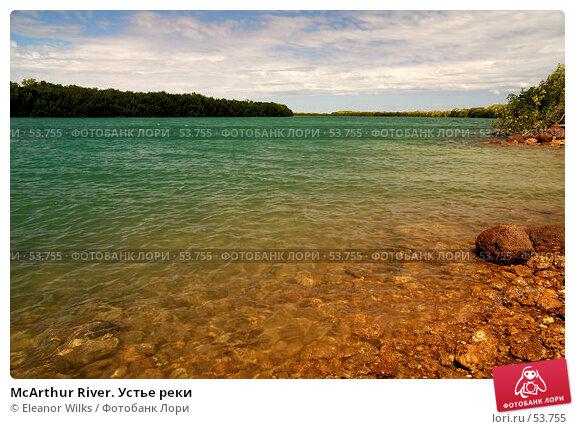 McArthur River. Устье реки, фото № 53755, снято 4 июля 2007 г. (c) Eleanor Wilks / Фотобанк Лори