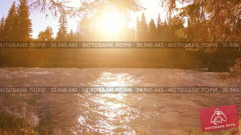 Купить «Meadow at mountain river bank. Landscape with green grass, pine trees and sun rays. Movement on motorised slider dolly.», видеоролик № 30949443, снято 20 февраля 2019 г. (c) Александр Маркин / Фотобанк Лори