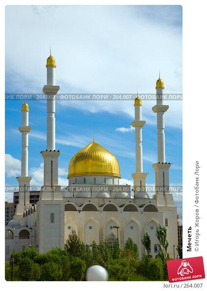 Мечеть, фото № 264007, снято 9 августа 2007 г. (c) Игорь Жоров / Фотобанк Лори