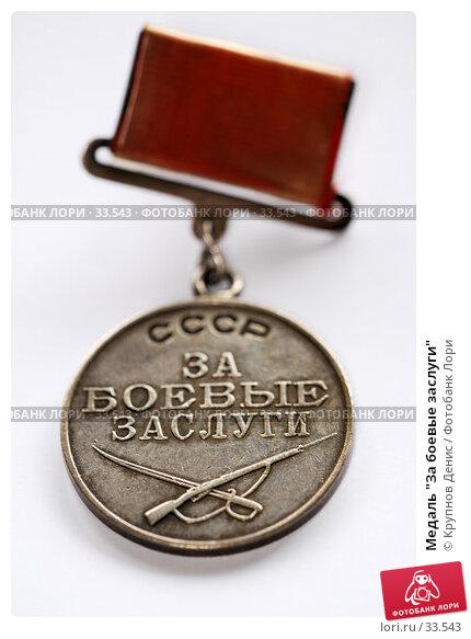 """Медаль """"За боевые заслуги"""", фото № 33543, снято 18 марта 2007 г. (c) Крупнов Денис / Фотобанк Лори"""