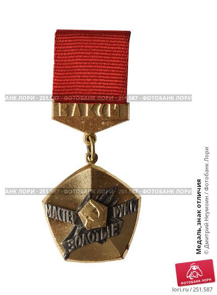 Медаль,знак отличия, эксклюзивное фото № 251587, снято 14 июня 2006 г. (c) Дмитрий Неумоин / Фотобанк Лори
