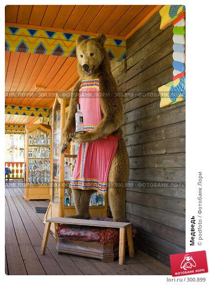 Медведь, фото № 300899, снято 19 мая 2007 г. (c) podfoto / Фотобанк Лори