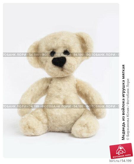 Медведь из войлока игрушка мягкая, фото № 54199, снято 20 июня 2007 г. (c) Биржанова Юлия / Фотобанк Лори