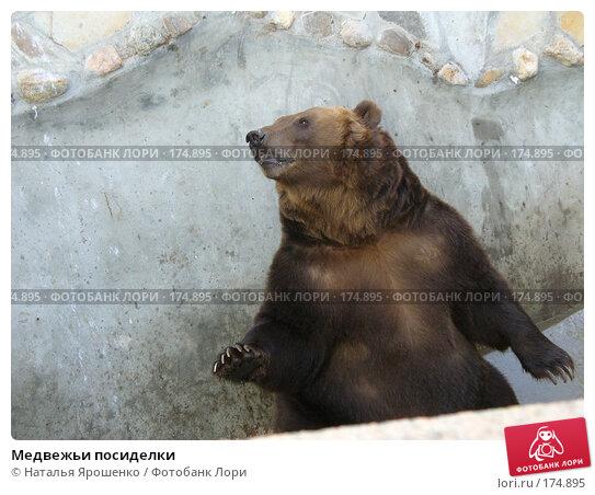Медвежьи посиделки, фото № 174895, снято 23 сентября 2006 г. (c) Наталья Ярошенко / Фотобанк Лори