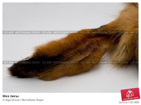 Купить «Мех лисы», фото № 121439, снято 19 ноября 2007 г. (c) Asja Sirova / Фотобанк Лори