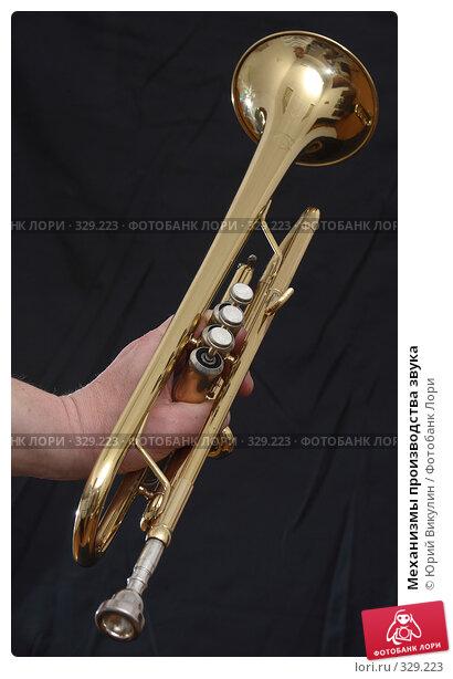 Механизмы производства звука, фото № 329223, снято 18 июня 2008 г. (c) Юрий Викулин / Фотобанк Лори