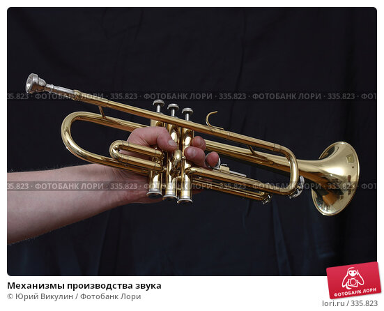 Механизмы производства звука, фото № 335823, снято 18 июня 2008 г. (c) Юрий Викулин / Фотобанк Лори