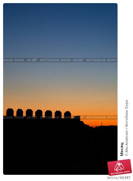 Купить «Месяц», фото № 64587, снято 20 января 2007 г. (c) Alla Andersen / Фотобанк Лори