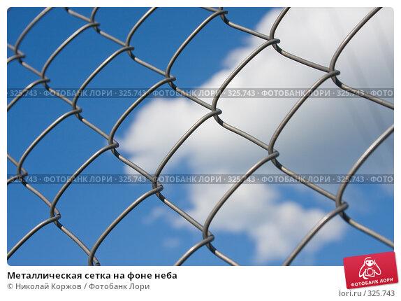 Купить «Металлическая сетка на фоне неба», фото № 325743, снято 13 июня 2008 г. (c) Николай Коржов / Фотобанк Лори