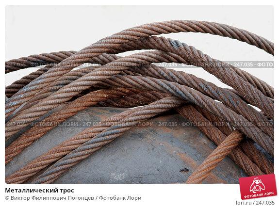 Металлический трос, фото № 247035, снято 14 июля 2004 г. (c) Виктор Филиппович Погонцев / Фотобанк Лори