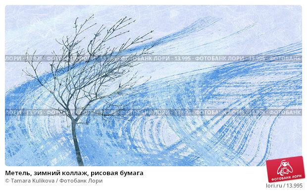 Метель, зимний коллаж, рисовая бумага, иллюстрация № 13995 (c) Tamara Kulikova / Фотобанк Лори