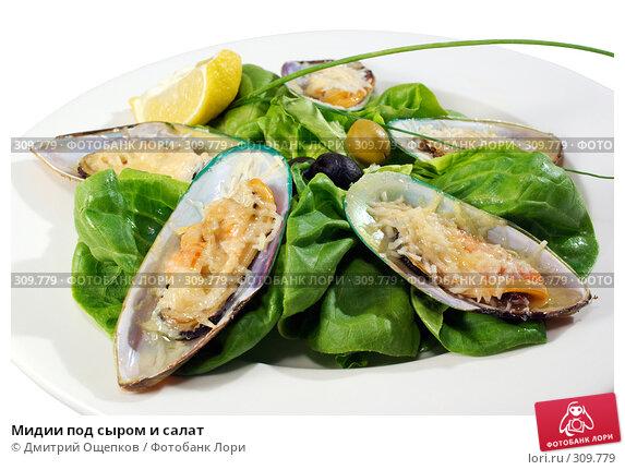 Мидии под сыром и салат, фото № 309779, снято 29 мая 2008 г. (c) Дмитрий Ощепков / Фотобанк Лори