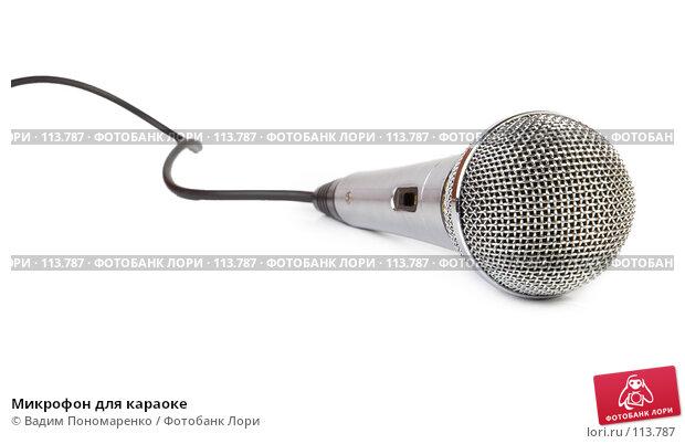 Микрофон для караоке, фото № 113787, снято 27 октября 2007 г. (c) Вадим Пономаренко / Фотобанк Лори