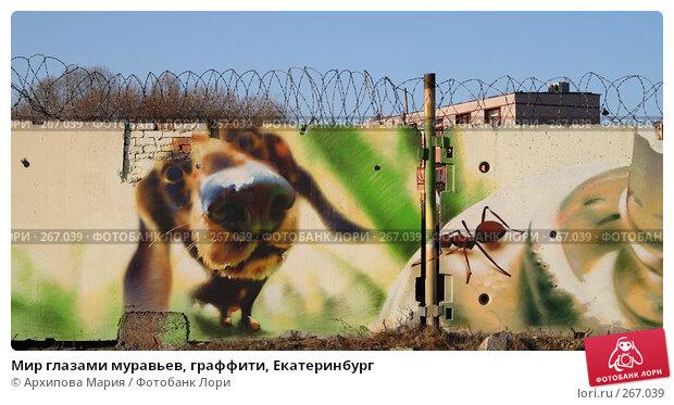 Мир глазами муравьев, граффити, Екатеринбург, фото № 267039, снято 30 апреля 2008 г. (c) Архипова Мария / Фотобанк Лори