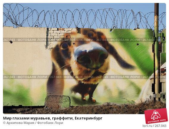 Купить «Мир глазами муравьев, граффити, Екатеринбург», фото № 267043, снято 30 апреля 2008 г. (c) Архипова Мария / Фотобанк Лори