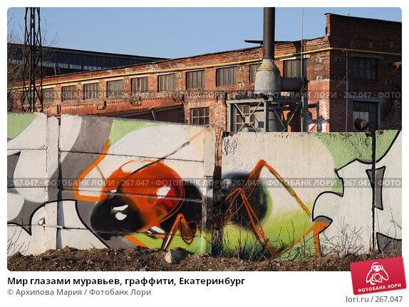 Мир глазами муравьев, граффити, Екатеринбург, фото № 267047, снято 30 апреля 2008 г. (c) Архипова Мария / Фотобанк Лори