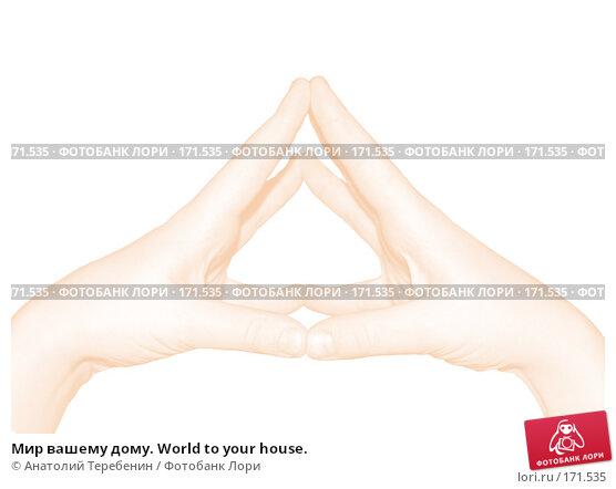 Мир вашему дому. World to your house., иллюстрация № 171535 (c) Анатолий Теребенин / Фотобанк Лори