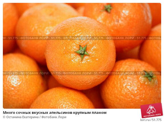 Много сочных вкусных апельсинов крупным планом, фото № 51775, снято 12 февраля 2007 г. (c) Останина Екатерина / Фотобанк Лори