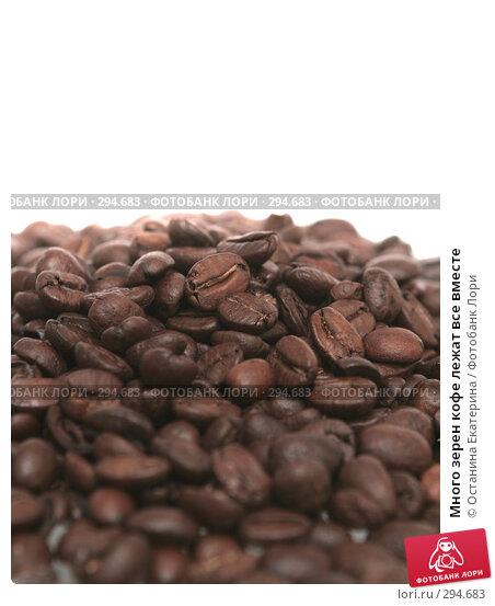 Много зерен кофе лежат все вместе, фото № 294683, снято 16 ноября 2007 г. (c) Останина Екатерина / Фотобанк Лори