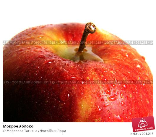 Мокрое яблоко, фото № 291215, снято 15 июня 2007 г. (c) Морозова Татьяна / Фотобанк Лори
