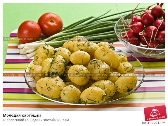 Молодая картошка, фото № 221195, снято 17 июля 2005 г. (c) Кравецкий Геннадий / Фотобанк Лори