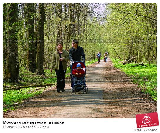 Купить «Молодая семья гуляет в парке», эксклюзивное фото № 268083, снято 29 апреля 2008 г. (c) lana1501 / Фотобанк Лори