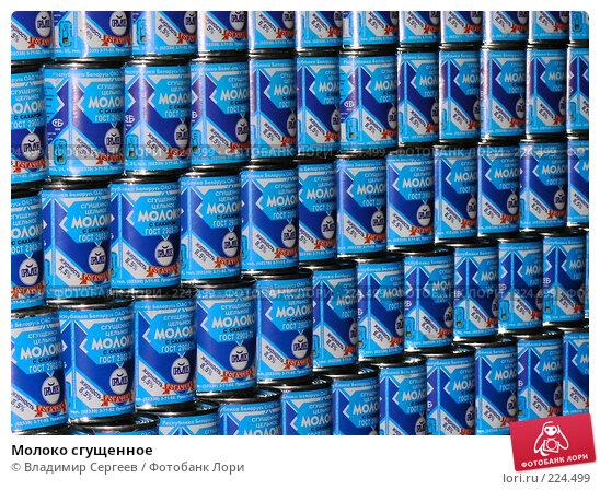 Купить «Молоко сгущенное», фото № 224499, снято 14 марта 2008 г. (c) Владимир Сергеев / Фотобанк Лори
