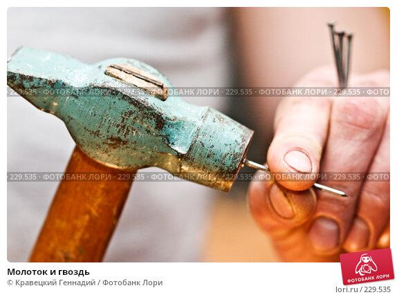 Купить «Молоток и гвоздь», фото № 229535, снято 17 января 2004 г. (c) Кравецкий Геннадий / Фотобанк Лори